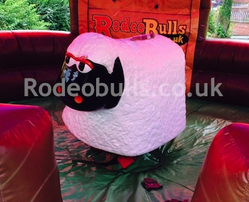 Bucking Sheep Ride for hire from rodeobulls.co.uk.
